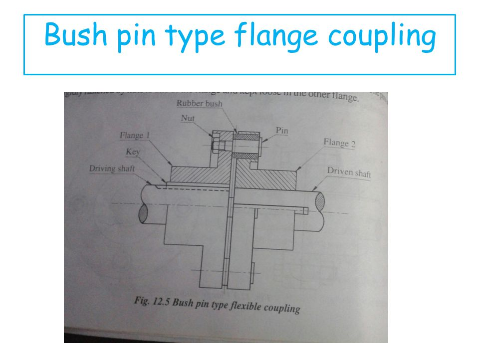 Bush pin type flange coupling