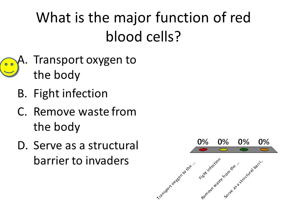 What is the major function of red blood cells