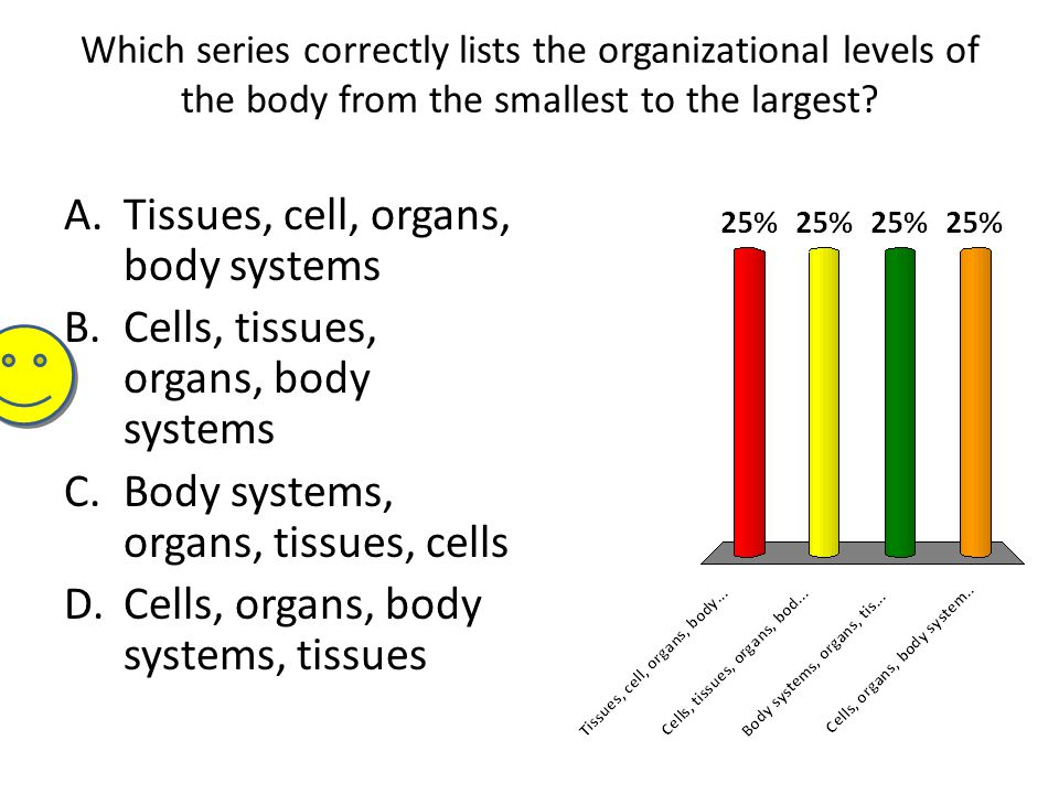 Tissues, cell, organs, body systems