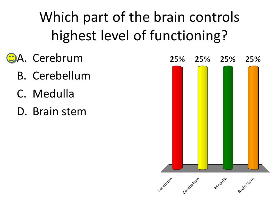 Which part of the brain controls highest level of functioning