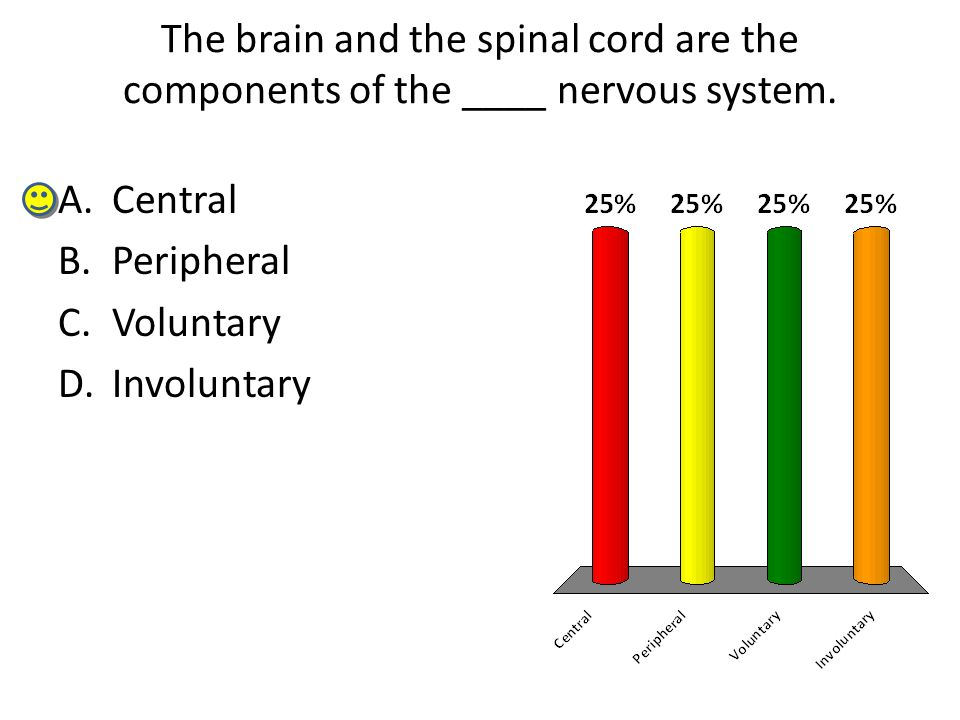 The brain and the spinal cord are the components of the ____ nervous system.