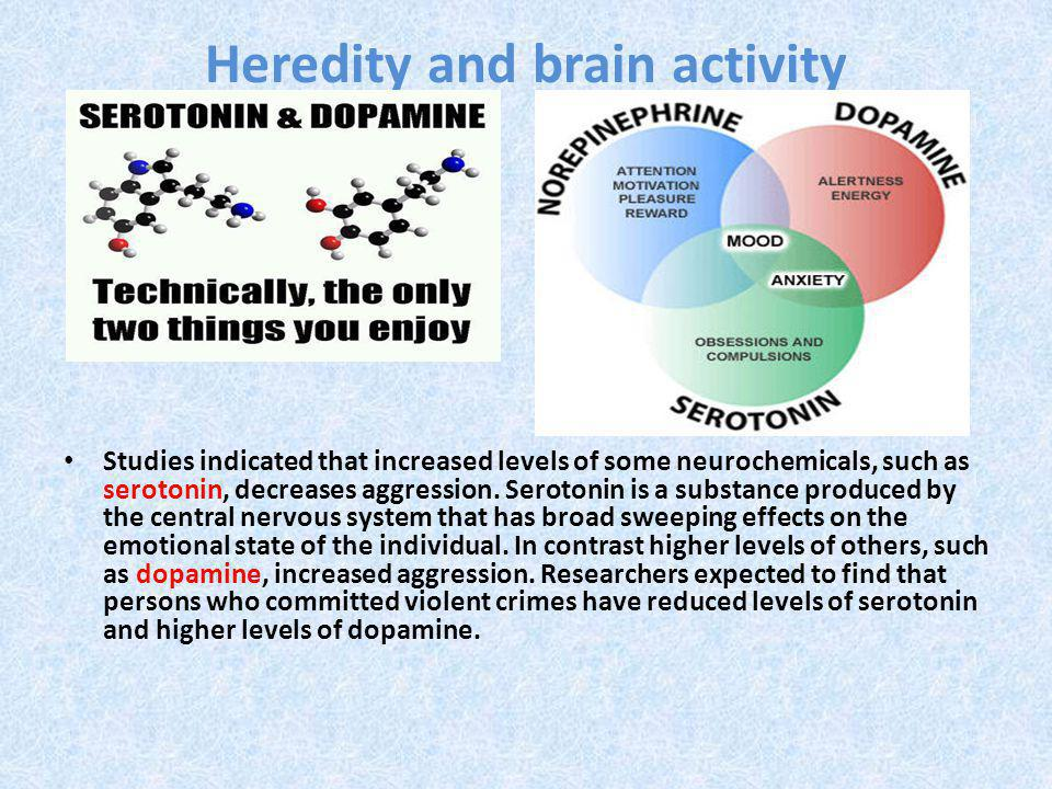 Heredity and brain activity