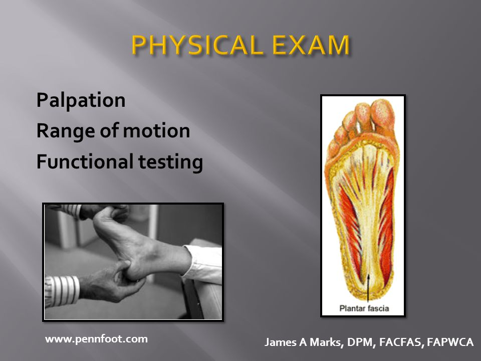 PHYSICAL EXAM Palpation Range of motion Functional testing