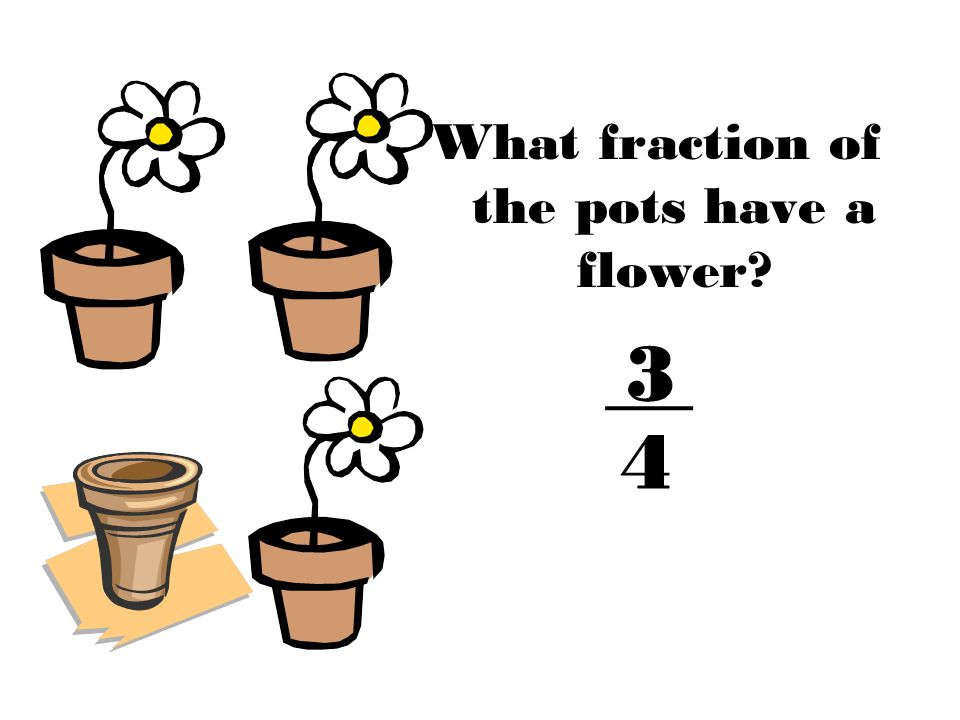 What fraction of the pots have a flower