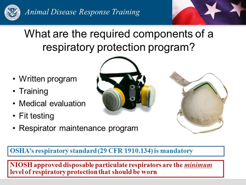 Respirators can be divided into two classes
