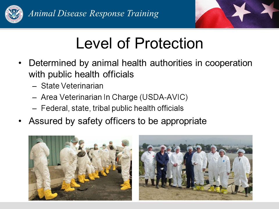Personal Protective Equipment Overview