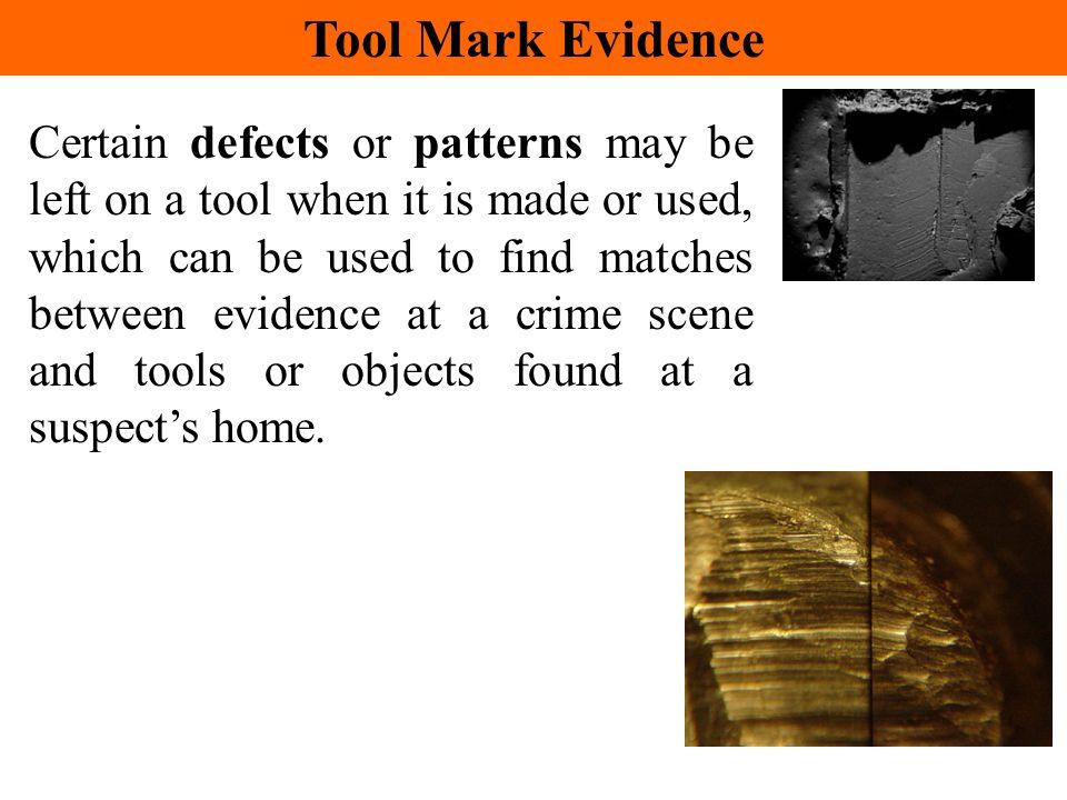 Tool Mark Evidence