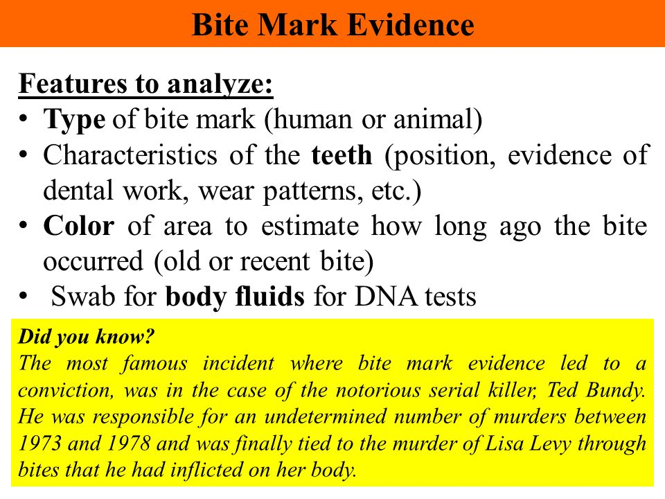 Bite Mark Evidence Features to analyze: