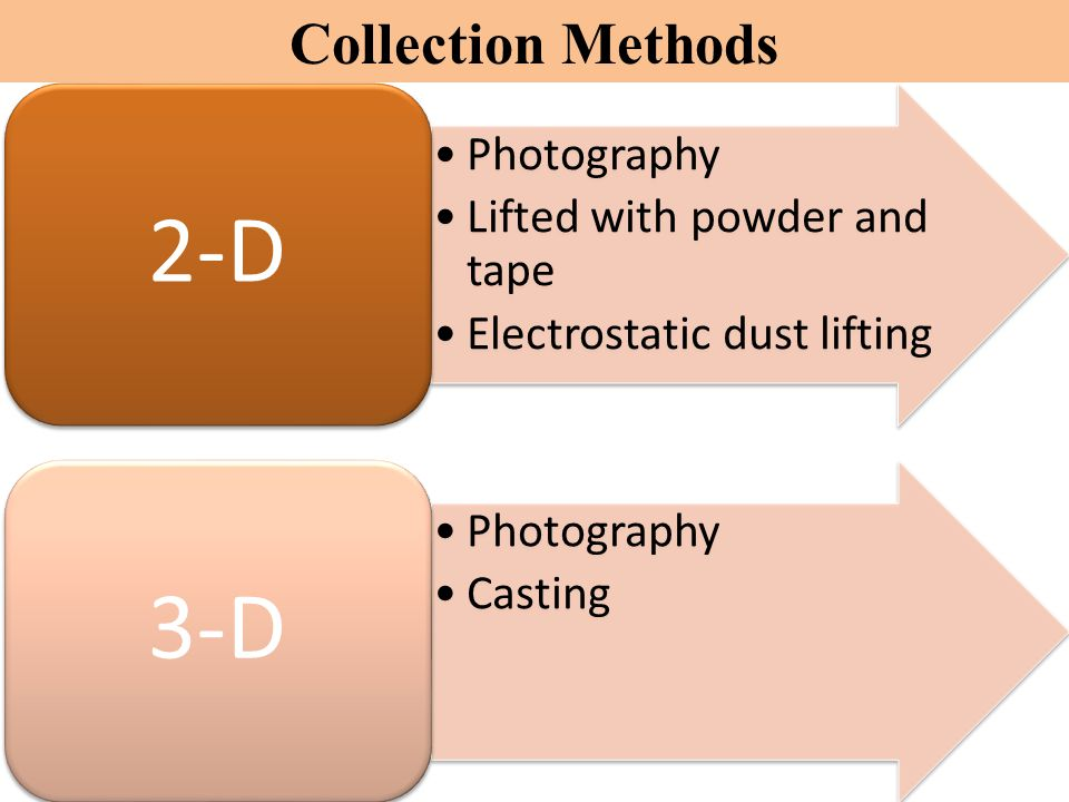 2-D 3-D Collection Methods Photography Lifted with powder and tape