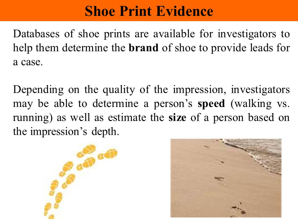 Shoe Print Evidence Databases of shoe prints are available for investigators to help them determine the brand of shoe to provide leads for a case.