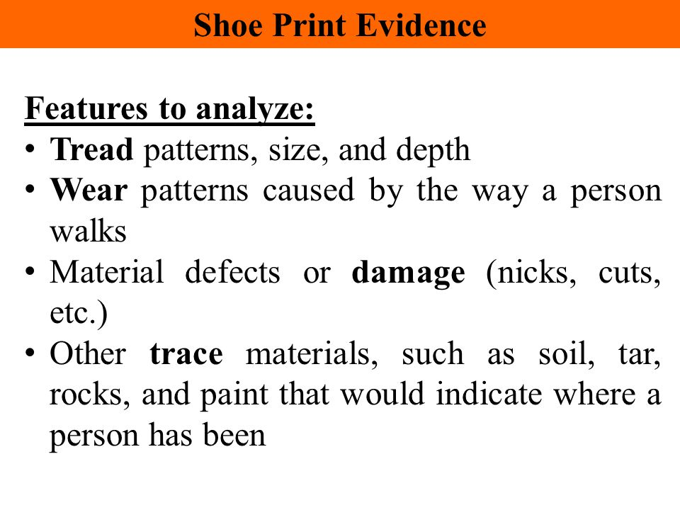Shoe Print Evidence Features to analyze: Tread patterns, size, and depth. Wear patterns caused by the way a person walks.