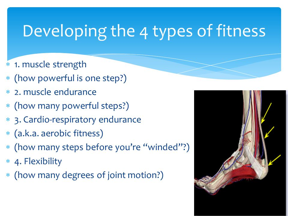Developing the 4 types of fitness