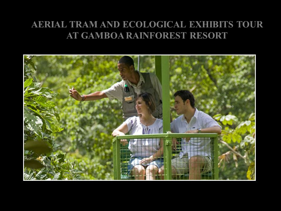 AERIAL TRAM AND ECOLOGICAL EXHIBITS TOUR AT GAMBOA RAINFOREST RESORT
