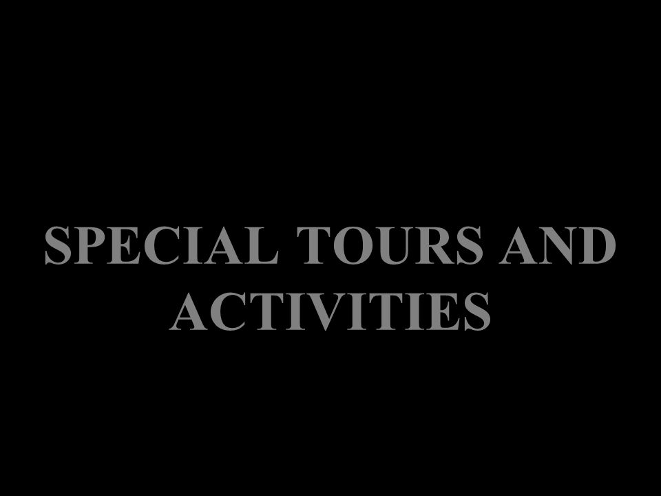 SPECIAL TOURS AND ACTIVITIES