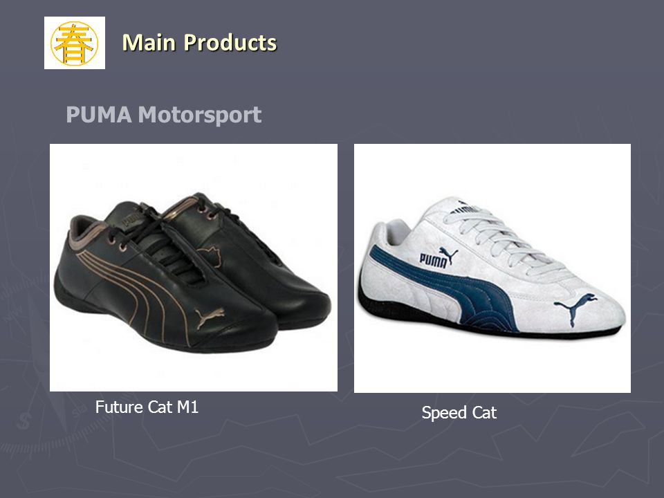 Main Products PUMA Motorsport Future Cat M1 Speed Cat