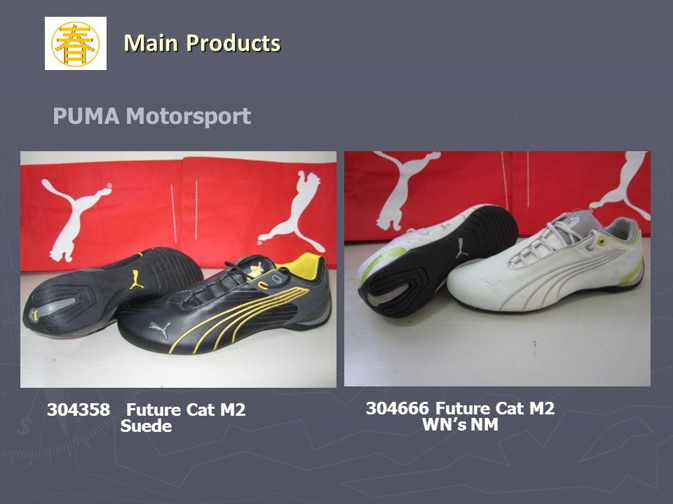 Main Products PUMA Motorsport 304358 Future Cat M2 Suede