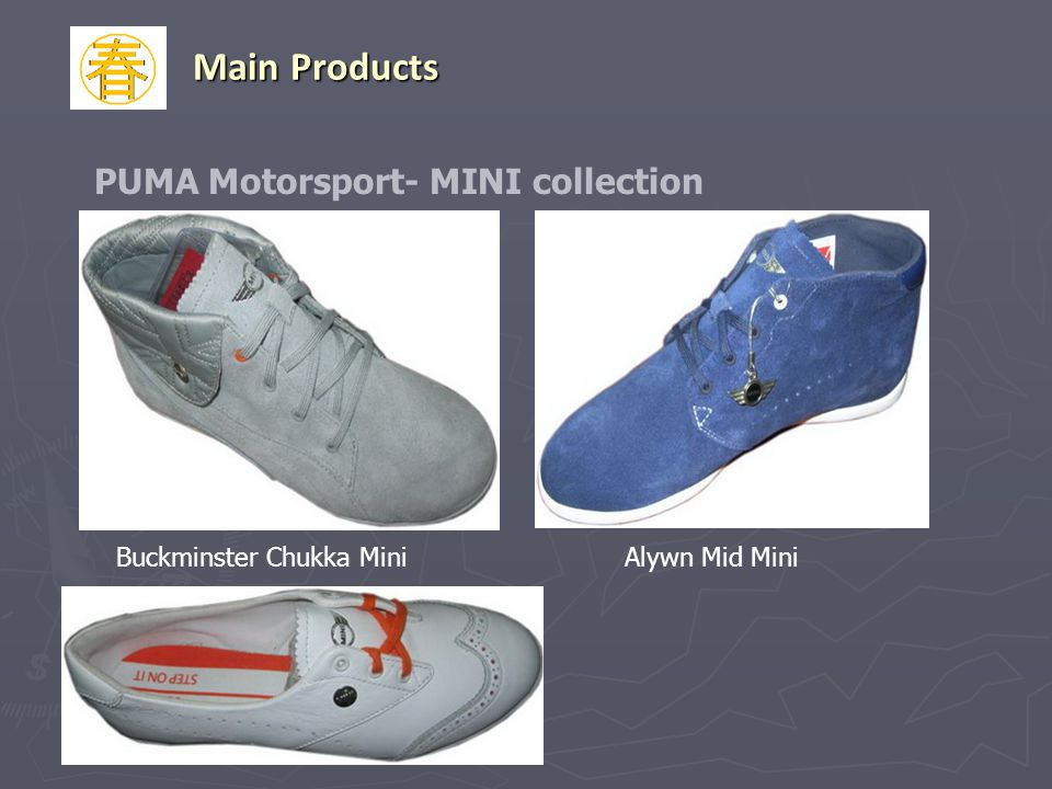 PUMA Motorsport- MINI collection