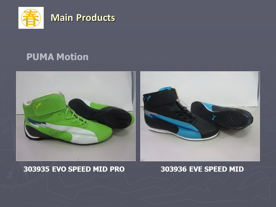 Main Products PUMA Motion 303935 EVO SPEED MID PRO