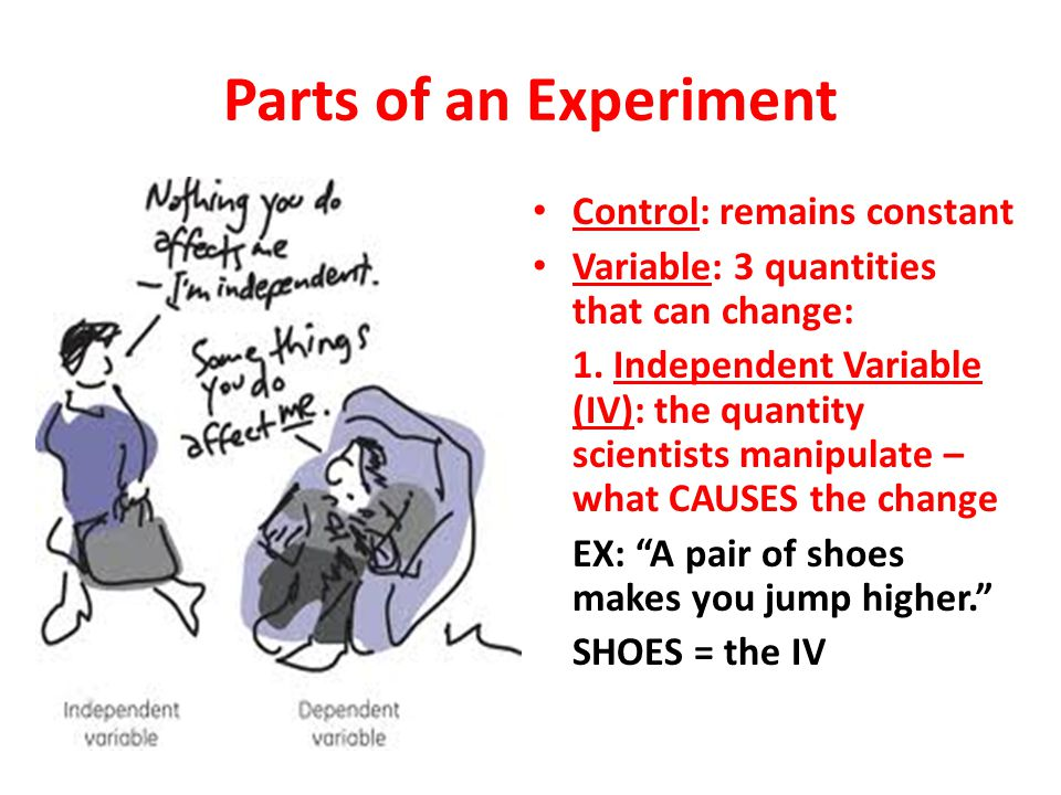 Parts of an Experiment Control: remains constant