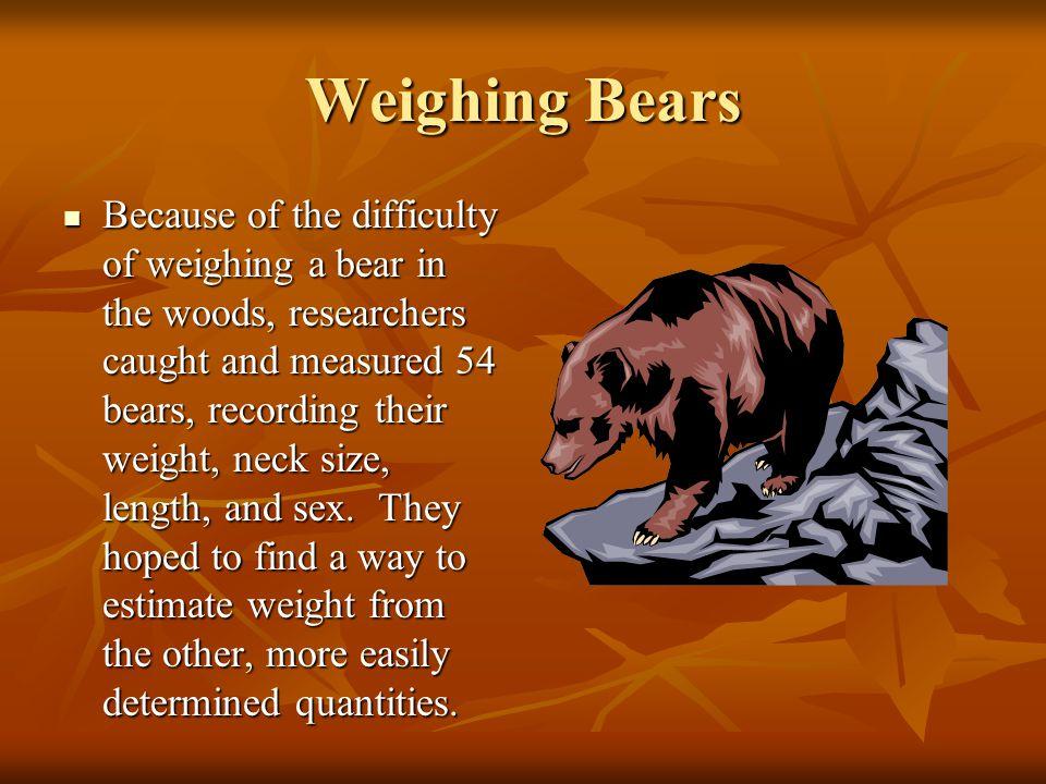 Weighing Bears