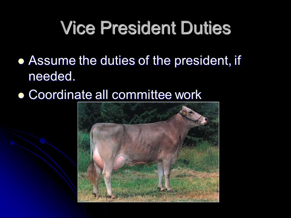 Vice President Duties Assume the duties of the president, if needed.