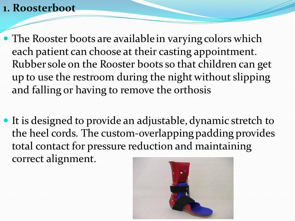 1. Roosterboot