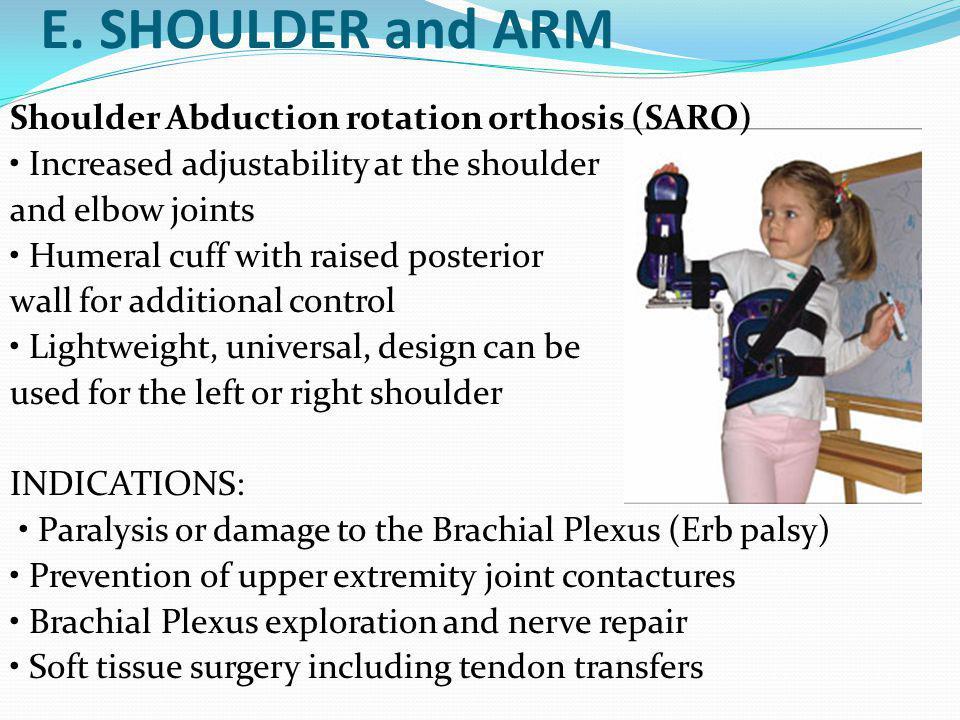 E. SHOULDER and ARM