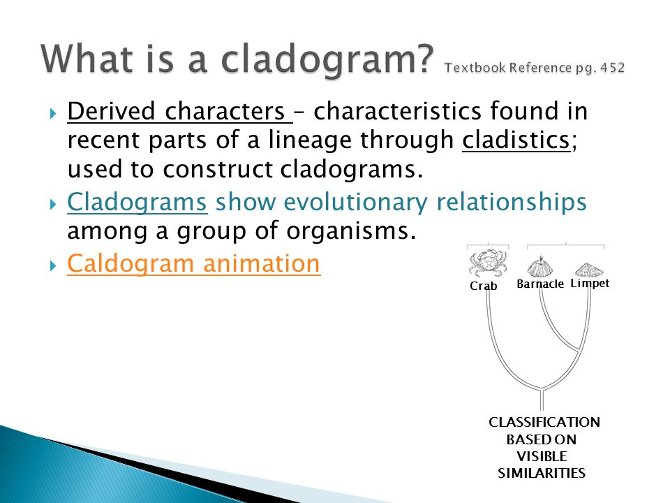What is a cladogram Textbook Reference pg. 452