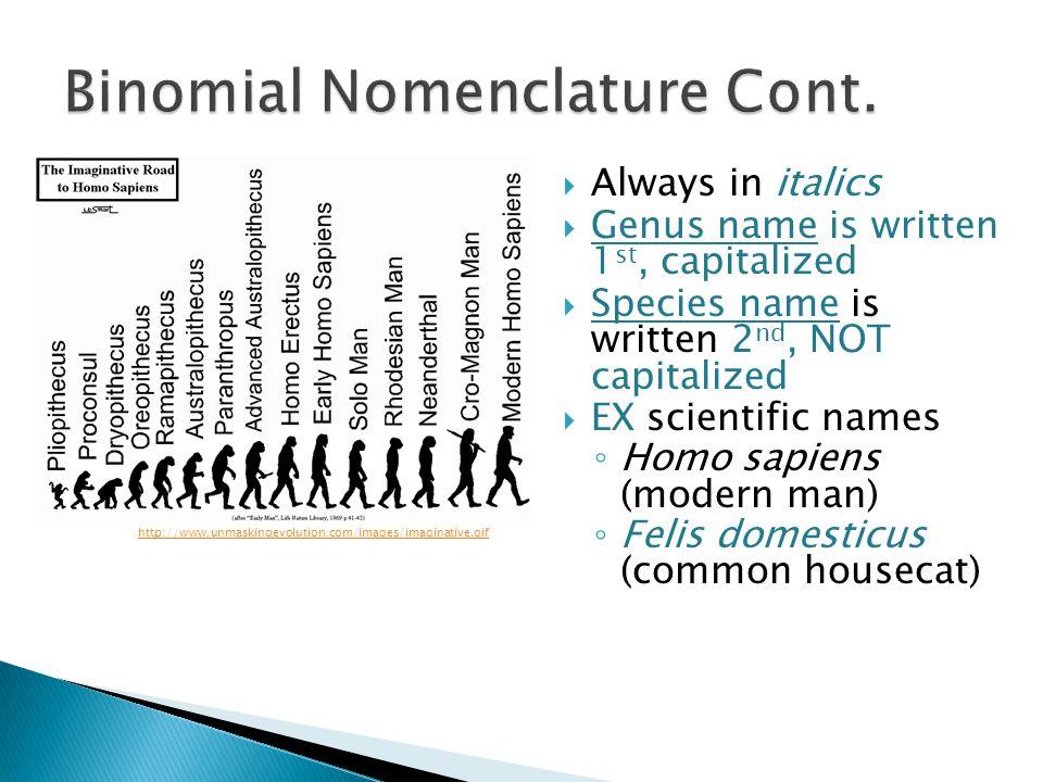 Binomial Nomenclature Cont.
