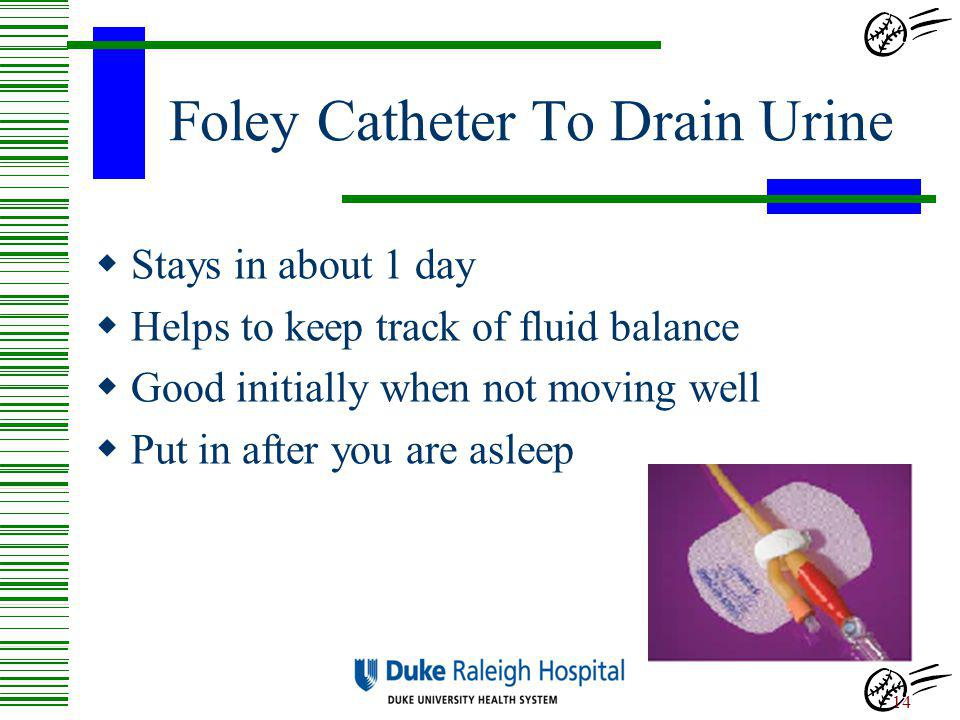 Foley Catheter To Drain Urine