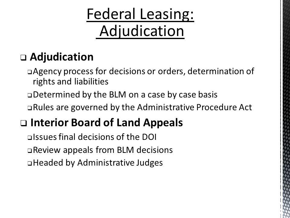 Federal Leasing: Adjudication Adjudication