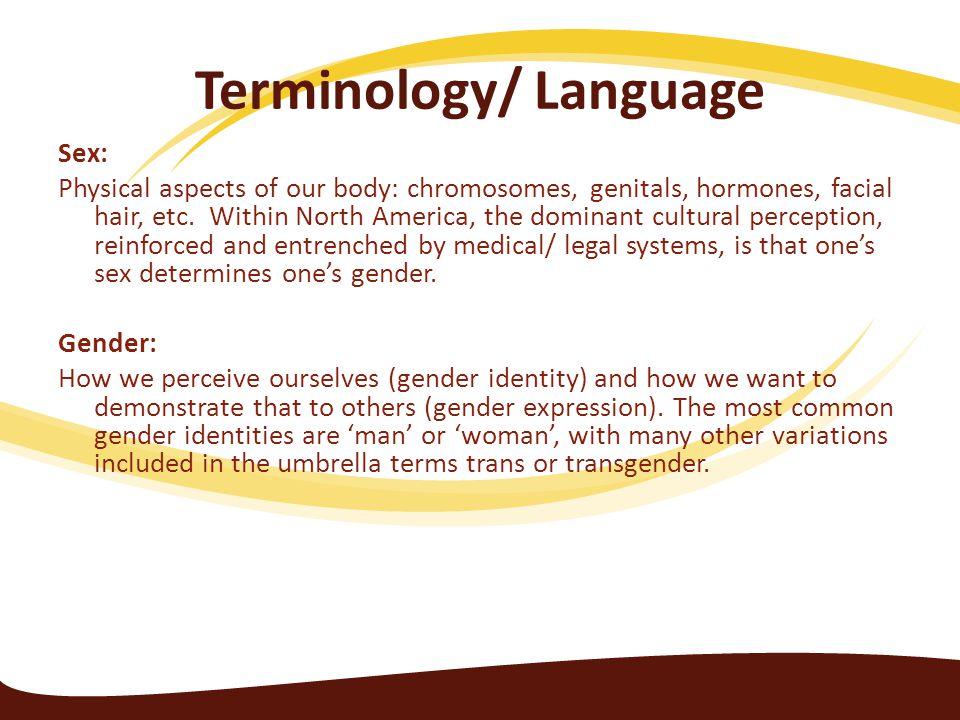Terminology/ Language
