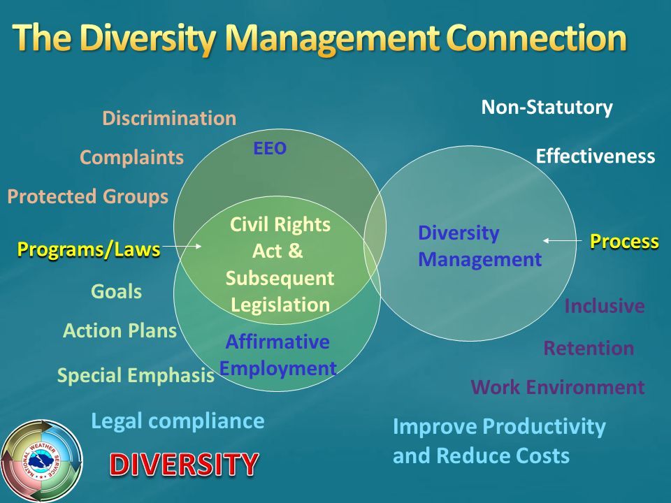 The Diversity Management Connection