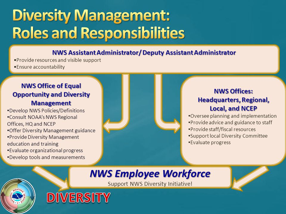 Diversity Management: Roles and Responsibilities