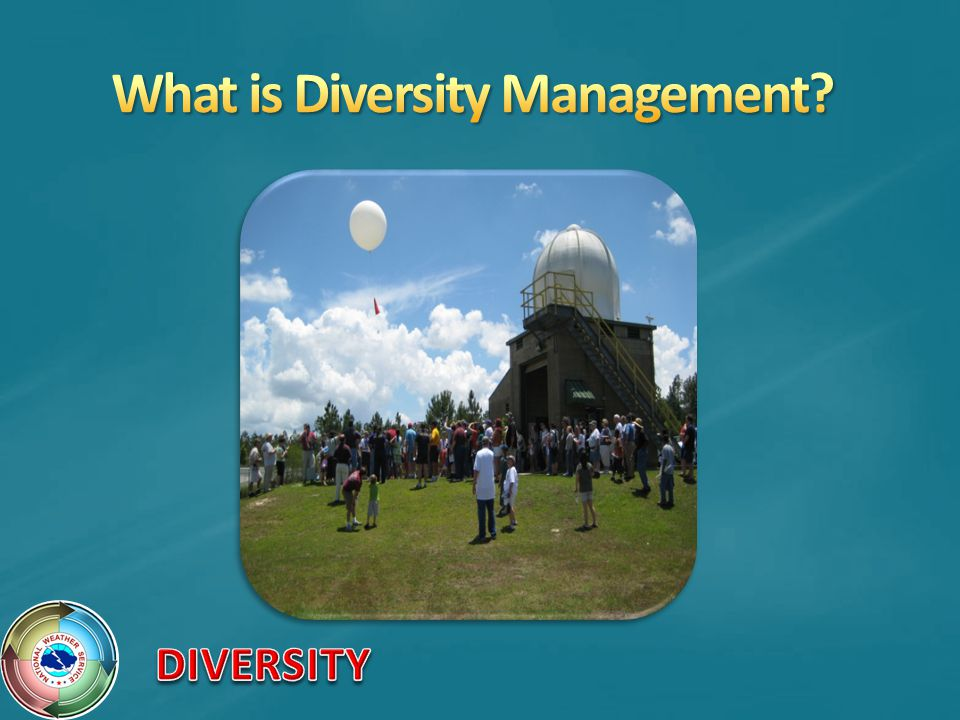 What is Diversity Management