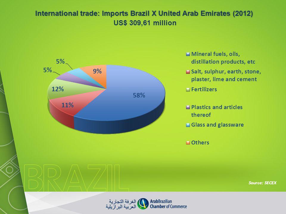 International trade: Imports Brazil X United Arab Emirates (2012)