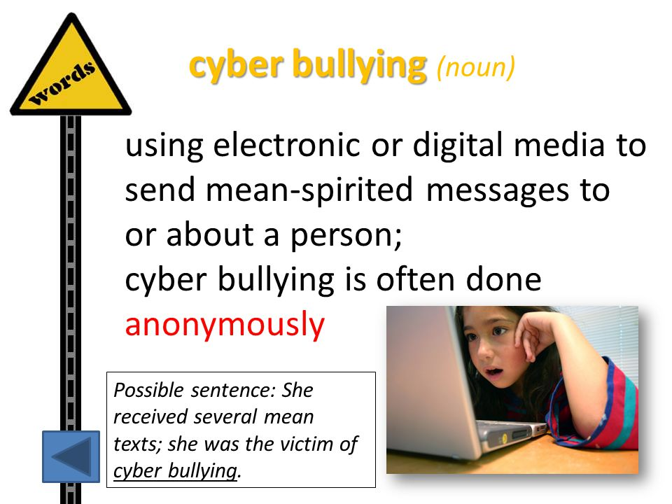 cyber bullying (noun)