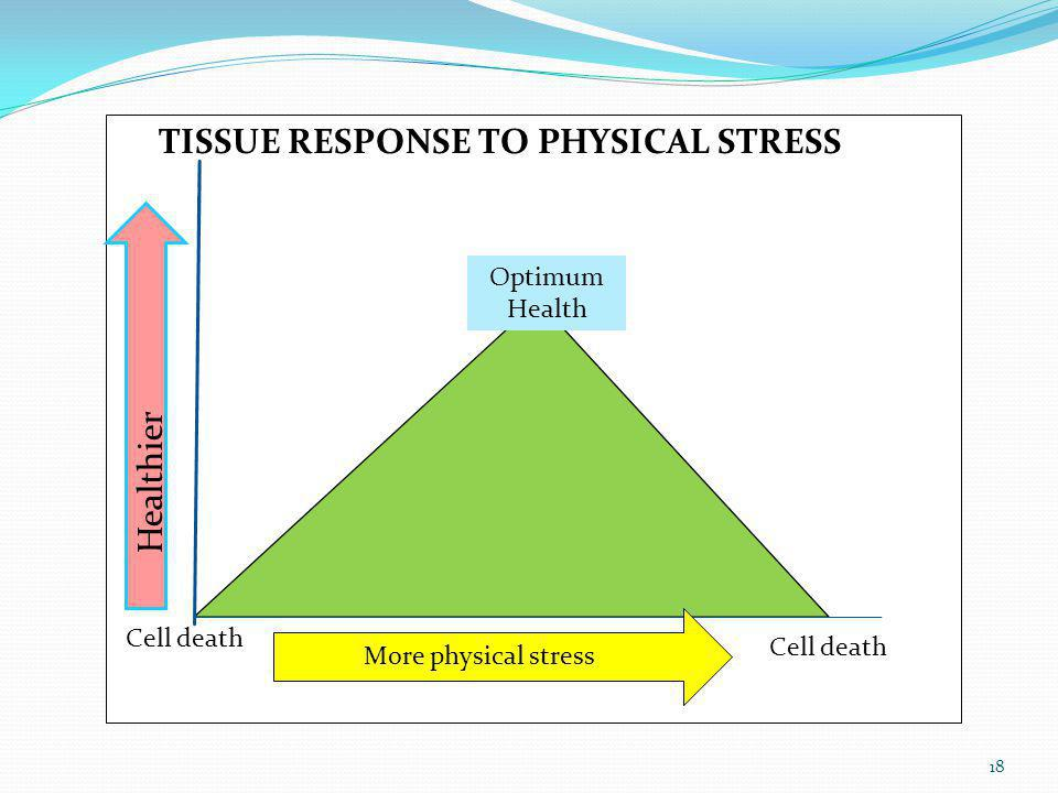 TISSUE RESPONSE TO PHYSICAL STRESS
