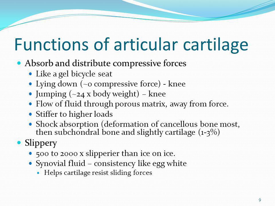 Functions of articular cartilage