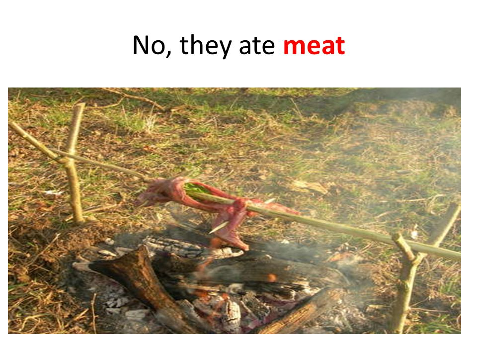 No, they ate meat