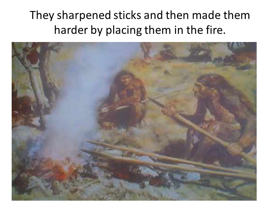 They sharpened sticks and then made them harder by placing them in the fire.