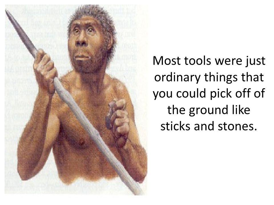 Most tools were just ordinary things that you could pick off of the ground like sticks and stones.
