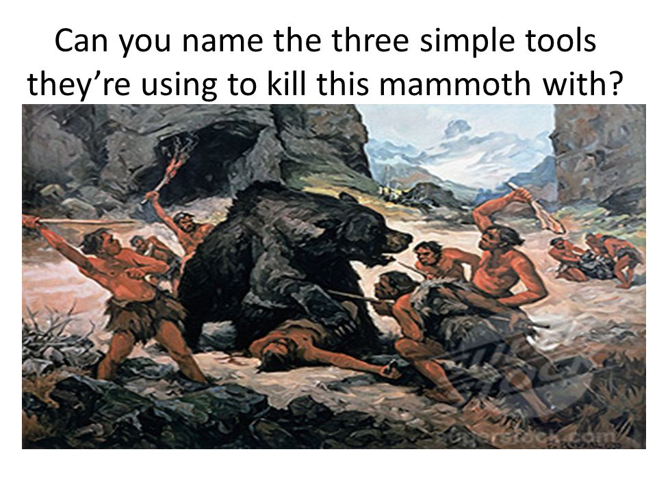 Can you name the three simple tools they're using to kill this mammoth with