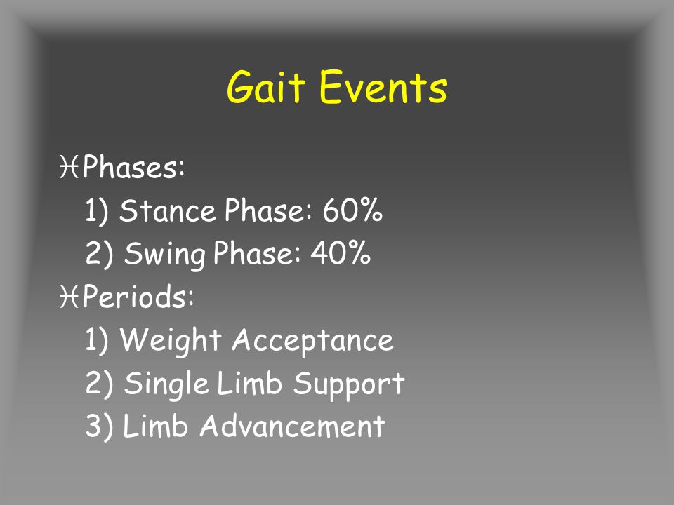 Gait Events Phases: 1) Stance Phase: 60% 2) Swing Phase: 40% Periods: