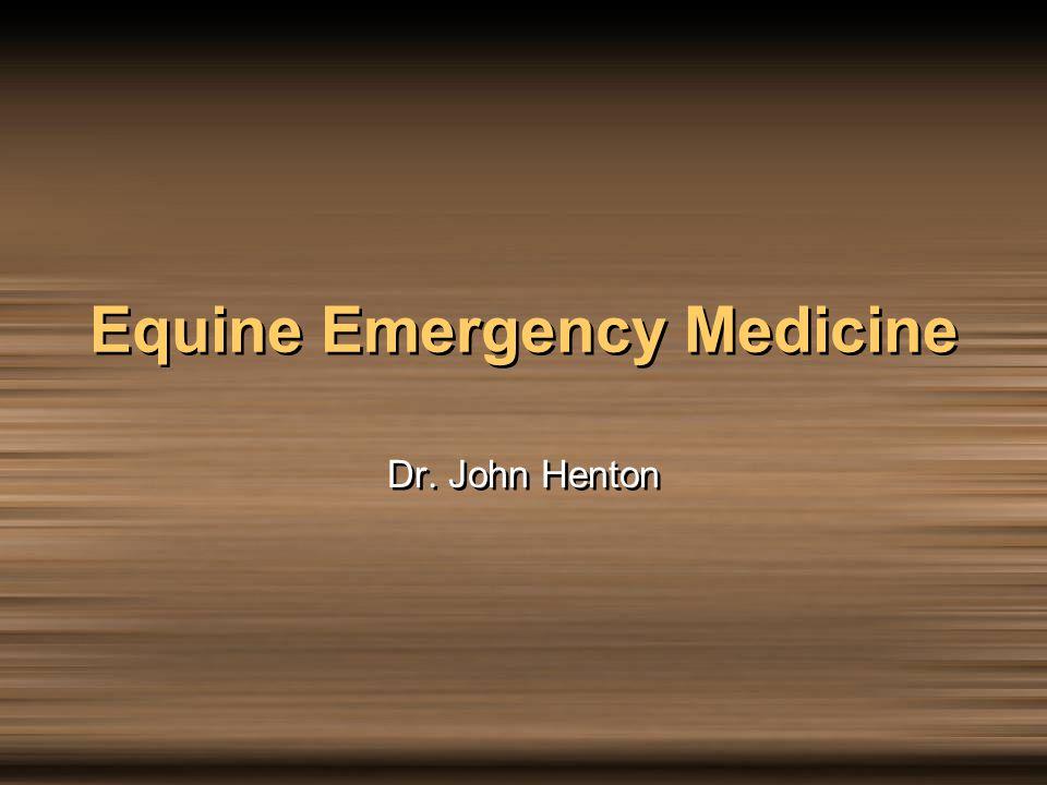 Equine Emergency Medicine