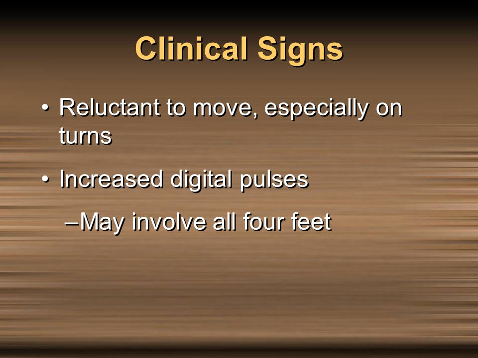 Clinical Signs Reluctant to move, especially on turns