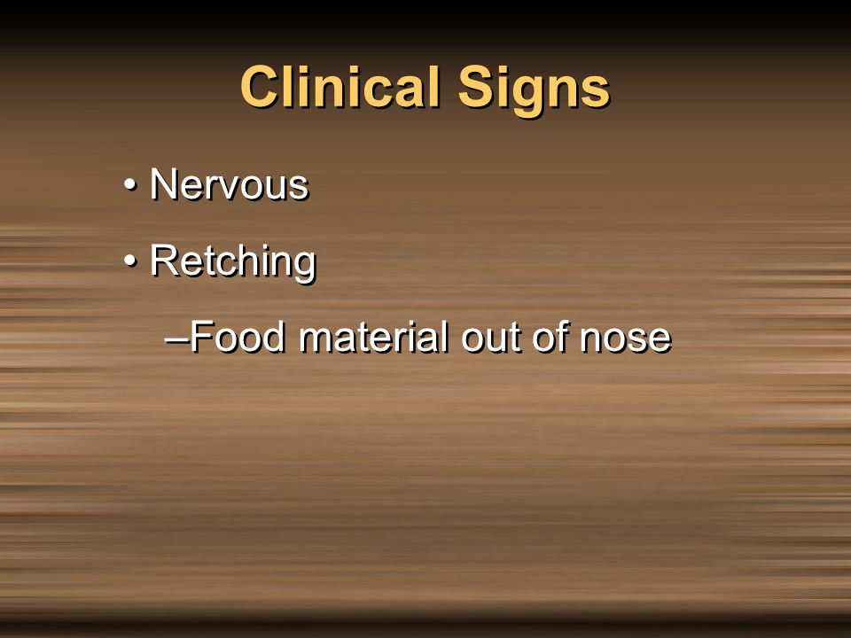 Clinical Signs Nervous Retching Food material out of nose