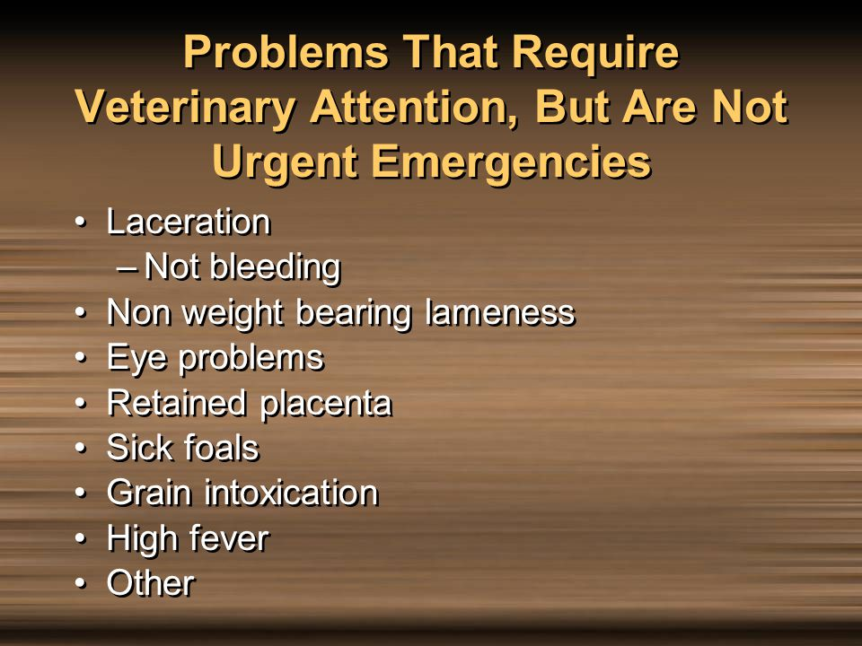 Problems That Require Veterinary Attention, But Are Not Urgent Emergencies