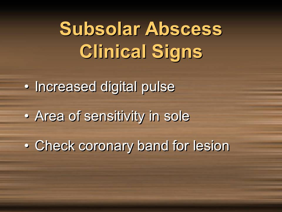 Subsolar Abscess Clinical Signs
