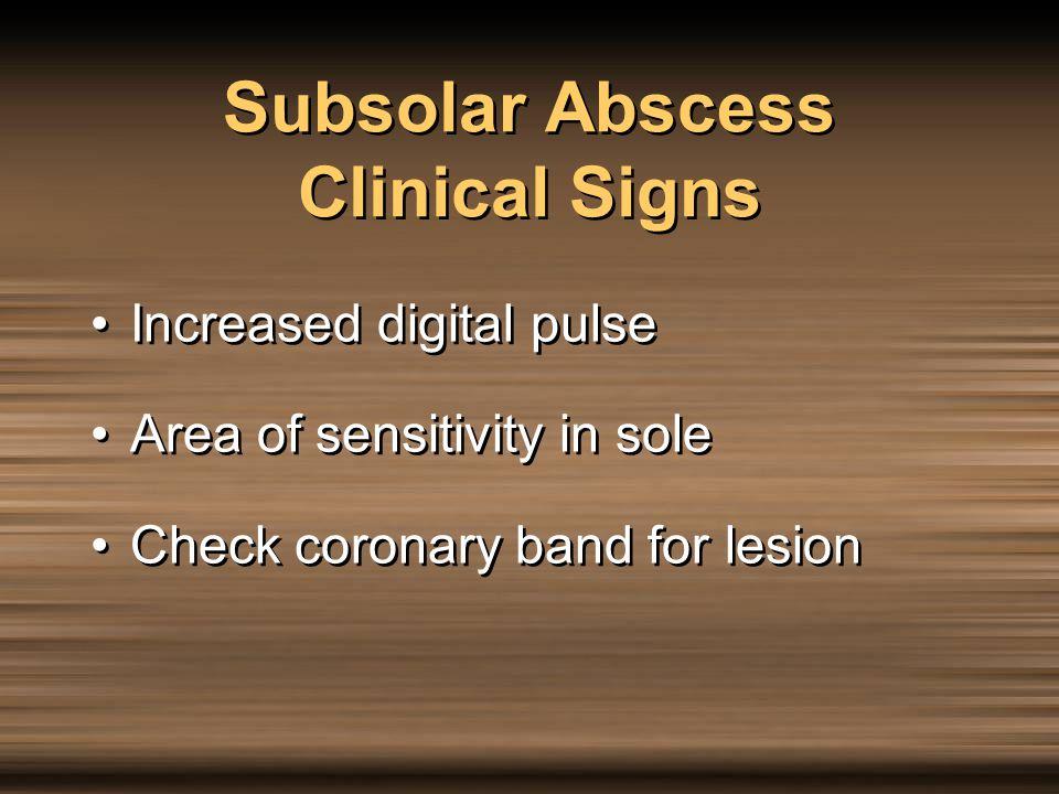 Subsolar Abscess Clinical Signs